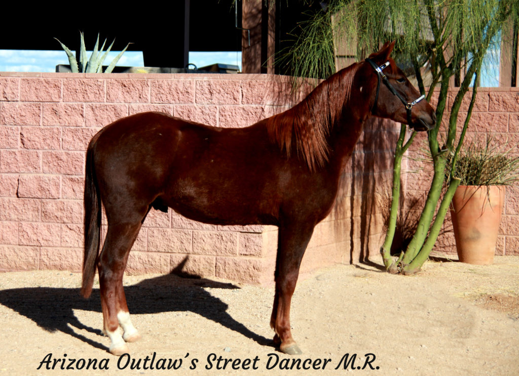 Arizona Outlaw´s Street Dancer M.R._13 copy